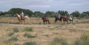 New horse park coming to Richland