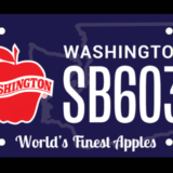 Washington apples license plate proposed; revenue would benefit Washington Apple Education Foundation